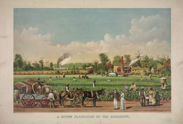 Pintura plantation moderna