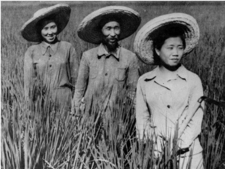 Coreanos Soviéticos