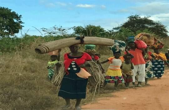 Cabo Delgado-refugiados